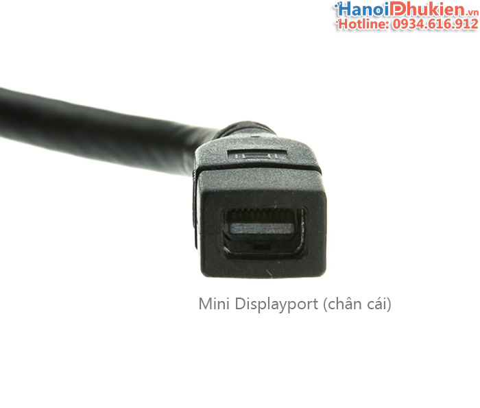 Cáp chuyển đổi Displayport đực sang Mini Displayport cái cho Apple Cinema Display