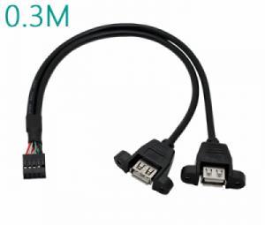 USB 9Pin to 2 USB Female 0.3M đầu bắt vít
