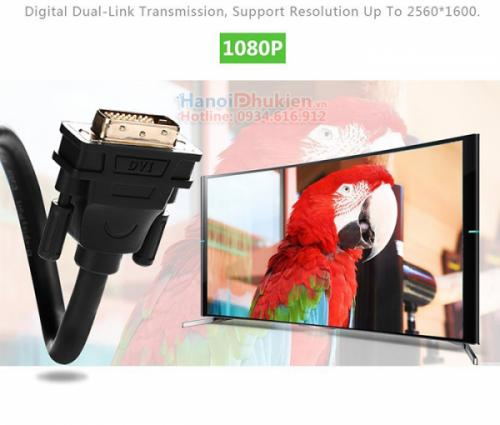 Cáp DVI to DVI 2M 24+1 Ugreen 11604 chính hãng