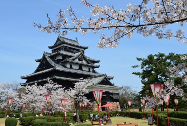 NAGOYA –  NARA – OSAKA – KYOTO – NÚI PHÚ SĨ – TOKYO