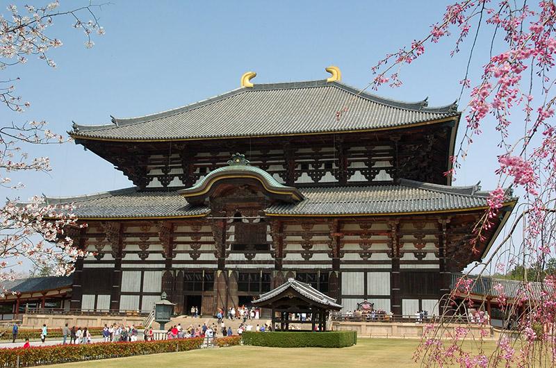Tokyo – Hitachi – Hakone – Fuji – Narita