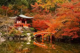 TOKYO – FUJI – YOKOHAMA –OWAKUDANI (5N4D) - NEW